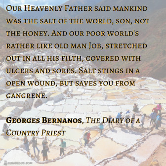 Our Heavenly Father said mankind was the salt of the world, son, not the honey. And our poor world's rather like old man Job, stretched out in all his filth, covered with ulcers and sores. Salt stings in a open wound, but saves you from gangrene. George Bernanos, The Diary of a Country Priest